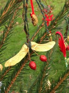 Sycamore and rose hip holly